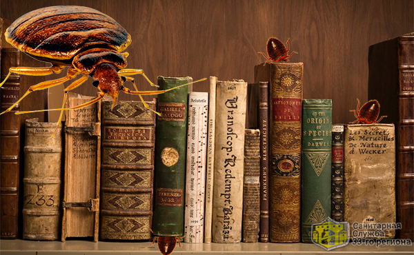 клопы прячутся в книгах