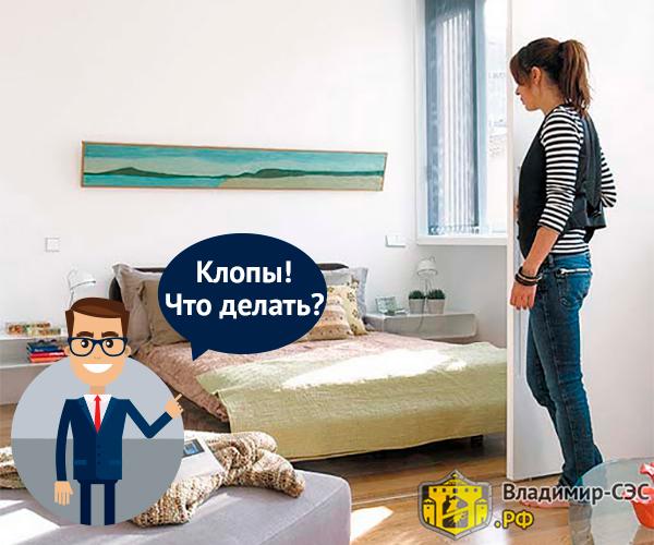 как выявить клопов в квартире