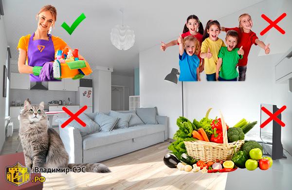 Кусают ли клопы после обработки квартиры