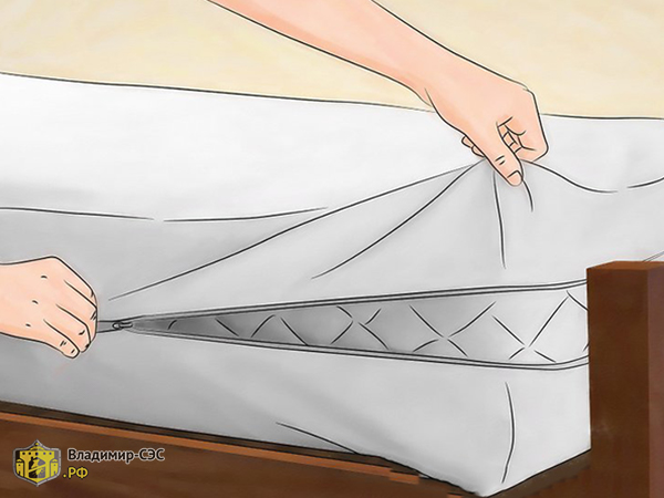 Народное средство от клопов в диване