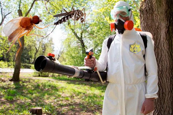 обработка участка туманом от комаров