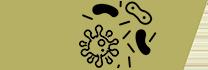 иконка дезинфекция
