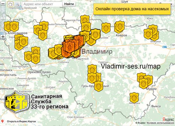 карта заражения Владимира насекомыми