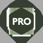 надпись pro иконка
