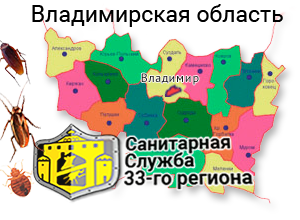 санитарная служба 33 региона