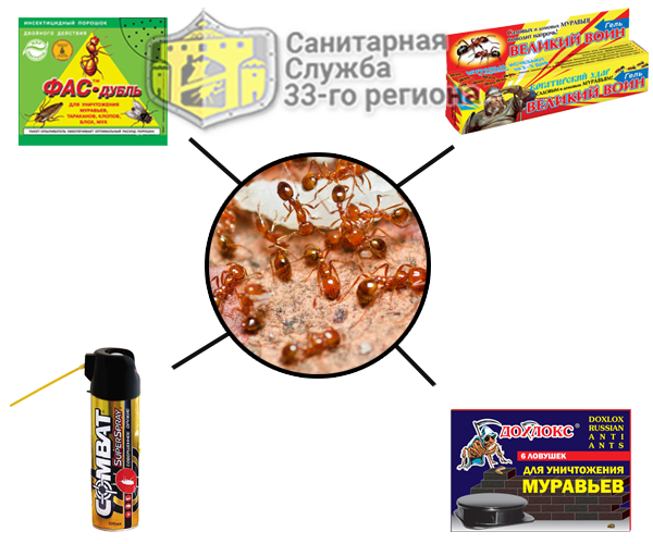 типы средств от муравьев