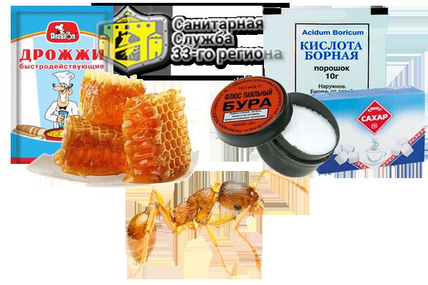 народные средства от муравьев