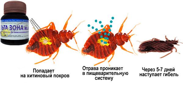 препарат дельта зона