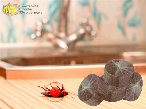 шашка от тараканов