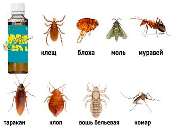 препарат юракс от насекомых