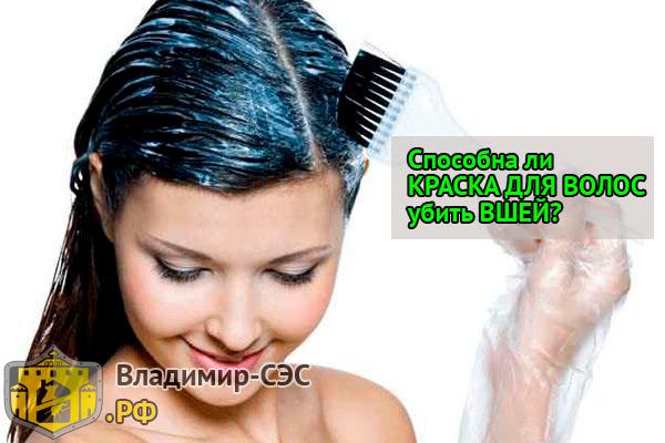 как вывести вши гниды с помощью краски для волос